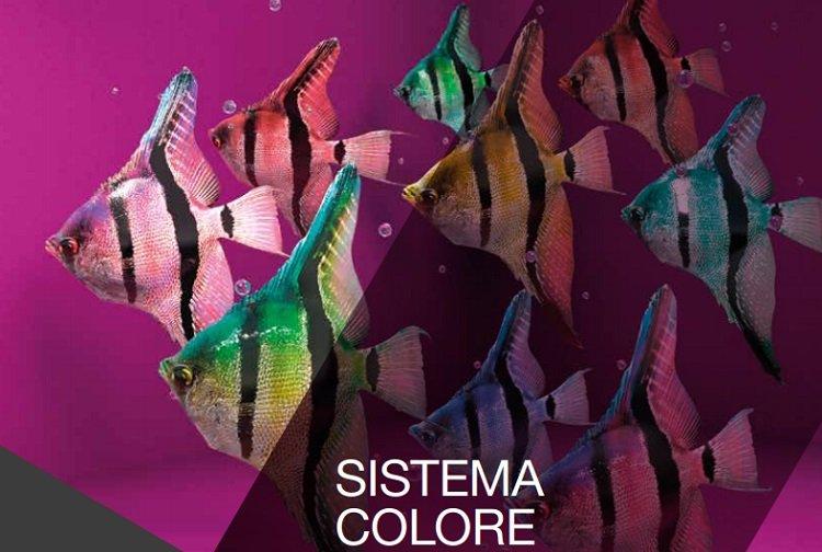 Sistema Colore