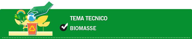 Tema tecnico: Biomasse