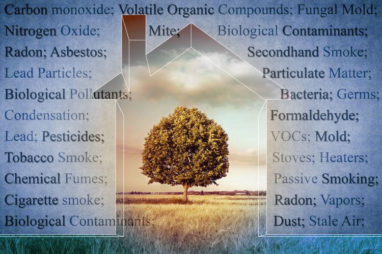 Cosa fare per migliorare la qualità dell'aria indoor