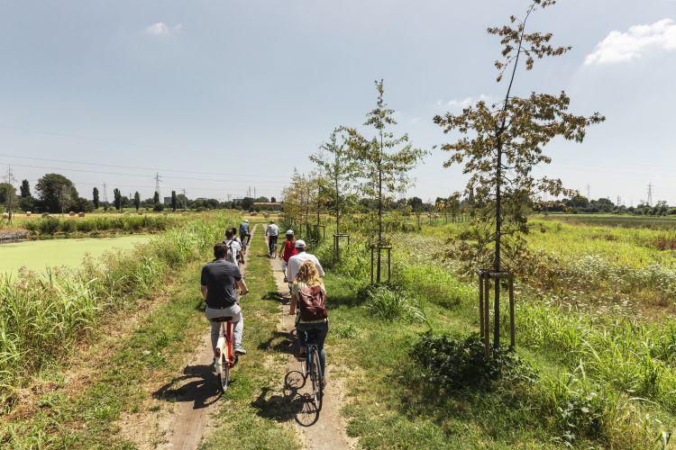 Forestami, tre milioni di piante entro il 2030 nell'area metropolitana milanese. Il sopralluogo