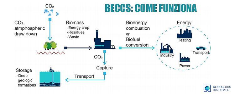 Bioenergia con cattura e sequestro dell'anidride carbonica, come funziona