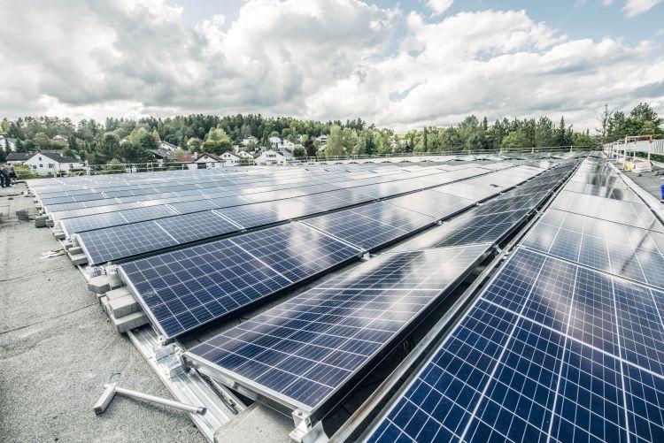 L'importanza dell'energia da fonti rinnovabili per la transizione energetica