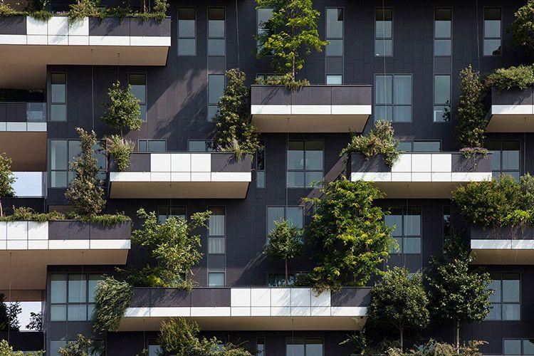 Bosco verticale a Milano, l'involucro vegetale