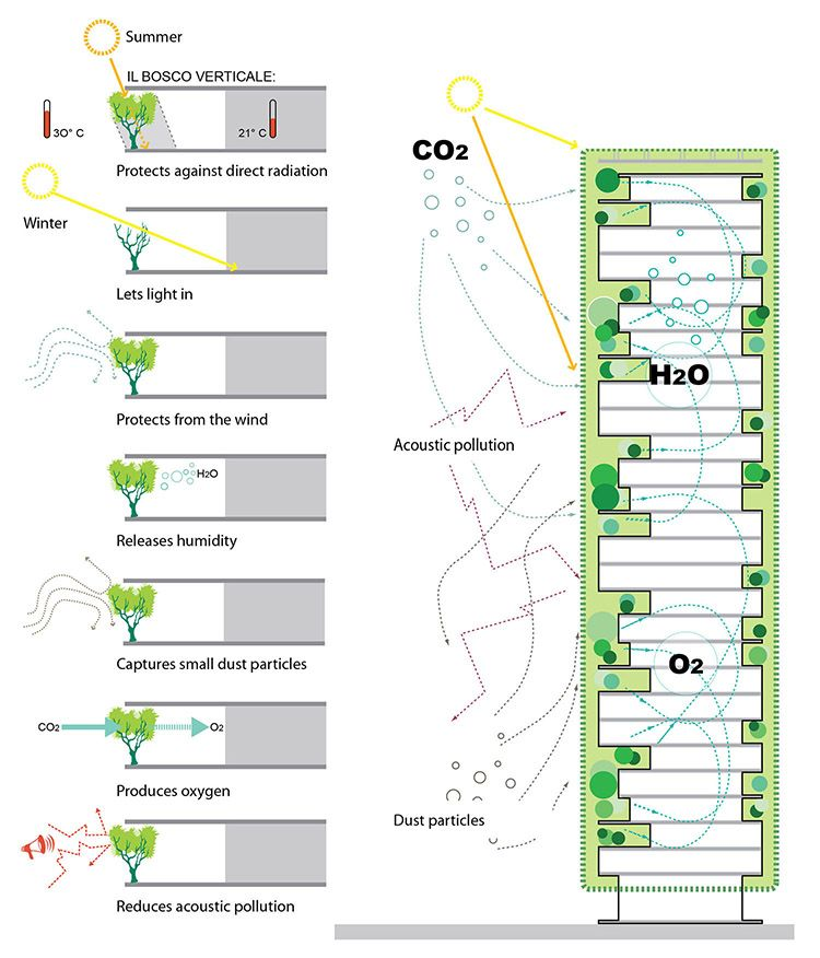 Benefici della forestazione urbana