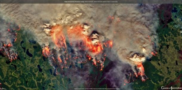 Estate 2020, incendi in Siberia