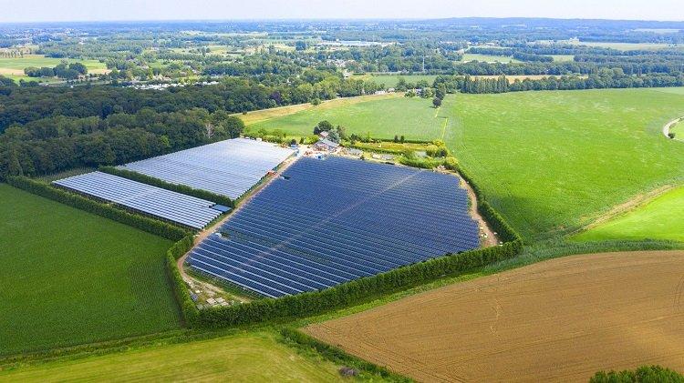 Agri fotovoltaico: le coltivazioni di BayWa r.e. nei Paesi Bassi