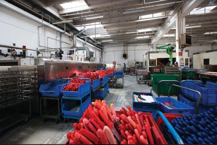 Innovazione e rigenerazione edificio-impianto per Eurocoltellerie
