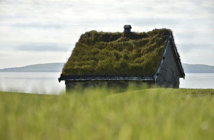 5 edifici di cui il vero protagonista è il verde