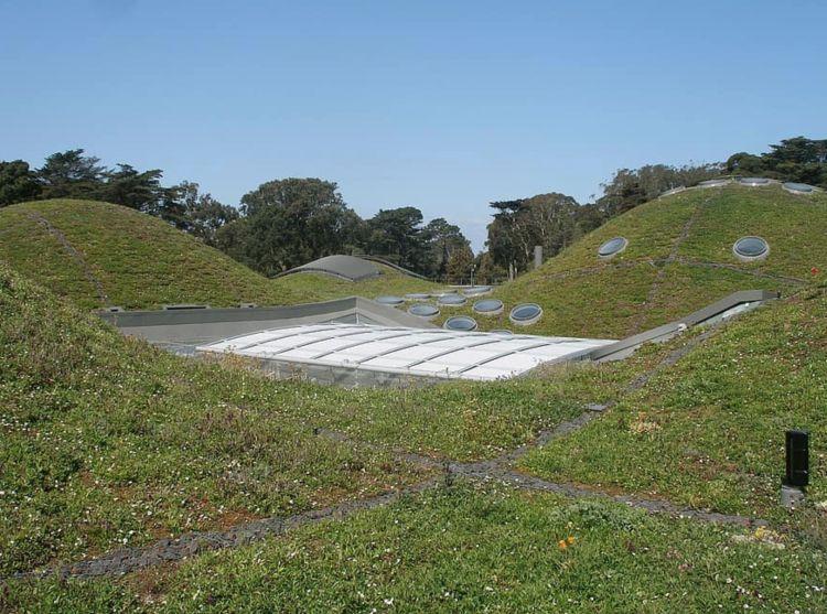 California Academy of Science, Renzo Piano