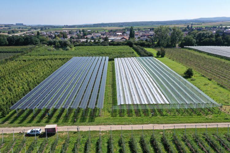 Fotovoltaico e agricoltura, una sinergia vincente