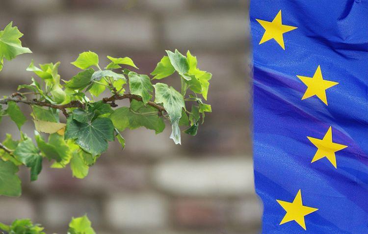 Edilizia sostenibile: l'Europa fa spazio a edifici e materiali naturali