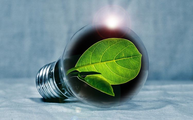 Il report ENEA sui consumi energetici domestici e la sensibilità ecologica dei cittadini