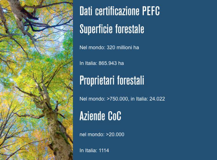 I dati delle foreste in Italia