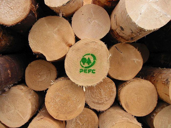 Come si struttura l'attività di PEFC e che valore ha per la tutela delle foreste