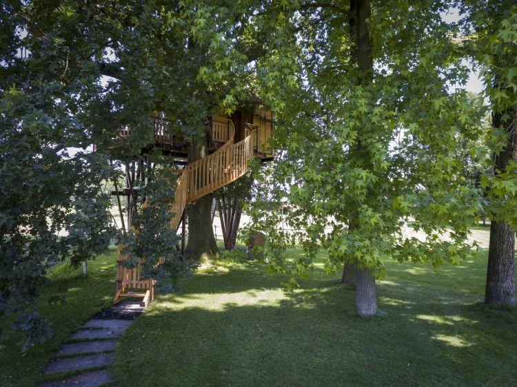 Sullalbero, le case per vivere in mezzo alla natura