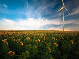 Cambiamento climatico: intensificare subito l'azione per salvare il pianeta
