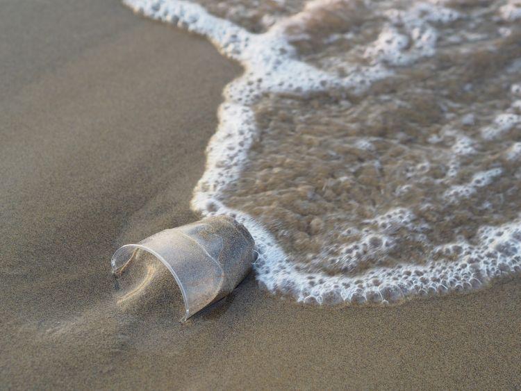 Plastica: economia circolare e sostenibilità ambientale