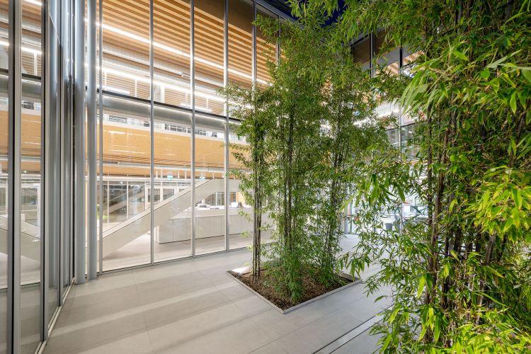 La corte interna alberata del nuovo quartier generale di Iperceramica a Fiorano Modenese by Mario Cucinella Architect