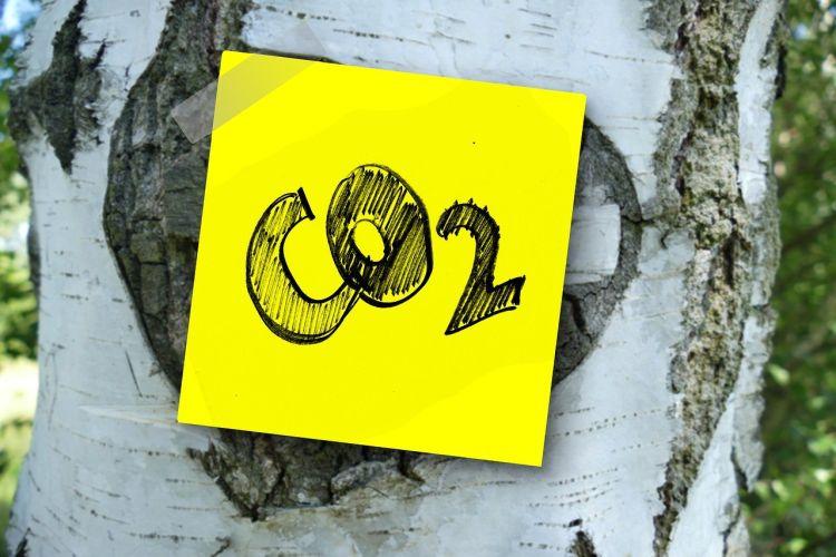 Edilizia ed emissioni di CO2