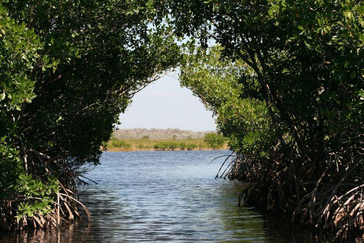 Giornata mondiale zone umide: La crisi degli ecosistemi