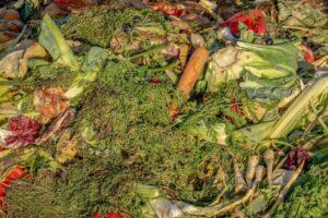 Lo spreco di cibo alimenta il cambiamento climatico