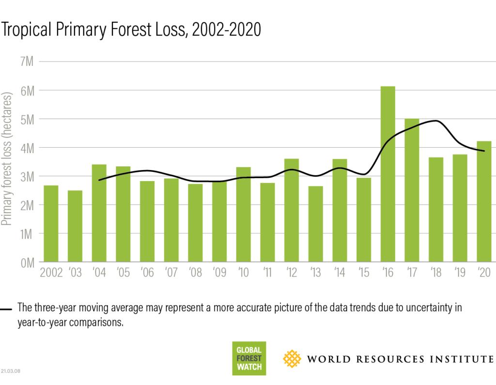 Perdita foreste tropicali tra il 2002 e il 2020