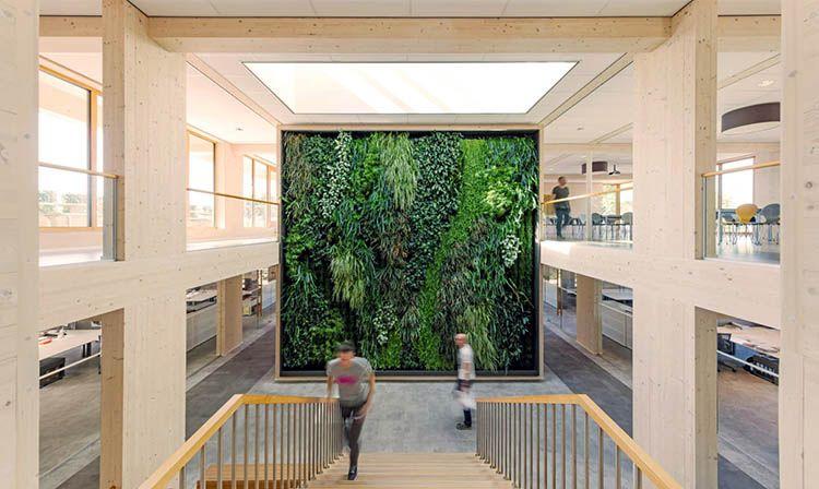 Geelen Counterflow: La hall con la parete verde