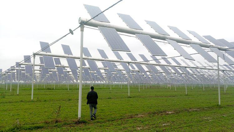 Agricoltura per la transizione energetica: l'agrivoltaico