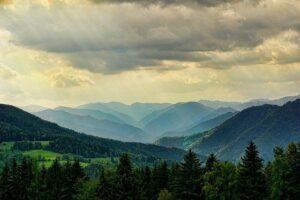 Foreste ed emissioni di CO2: perché all'Italia serve un registro sui crediti di carbonio