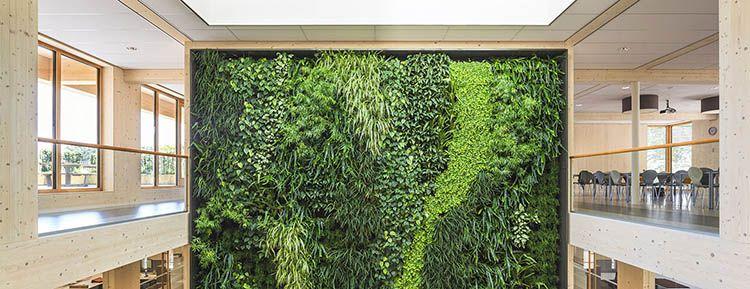 Geelen Counterflow: la grande parete verde nella hall