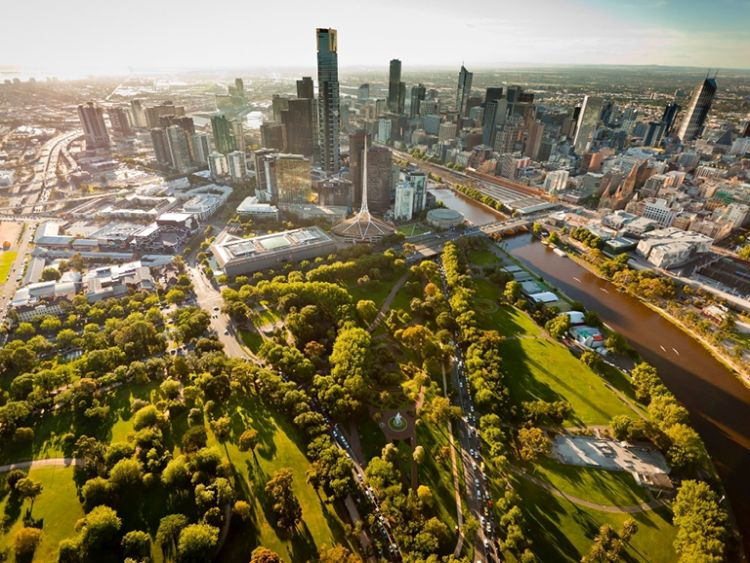 Piano strategico per la forestazione urbana a Melbourne
