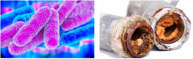 Il metodoPhysico® contribuisce anche all'eliminazione delle forti corrosioni dei metalli