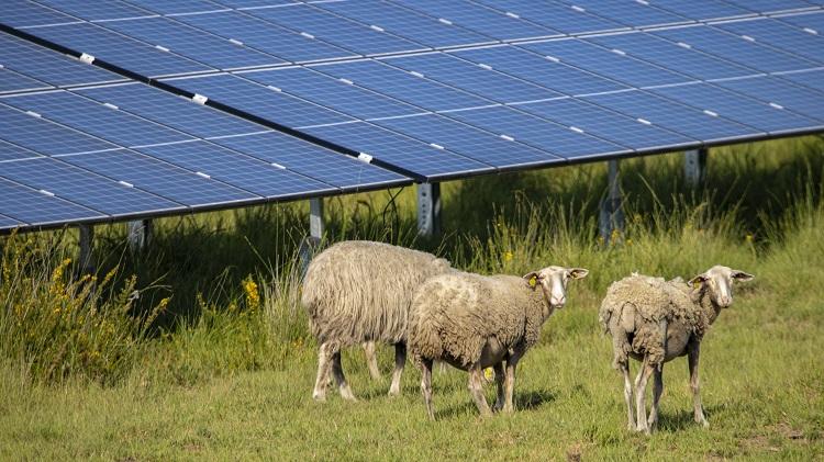 Da siti militari a sede di pannelli solari con BayWa r.e.