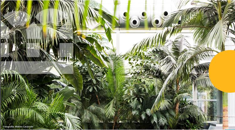 Study Tour: fotovoltaico, architettura e paesaggio nella Fondazione Radicepura