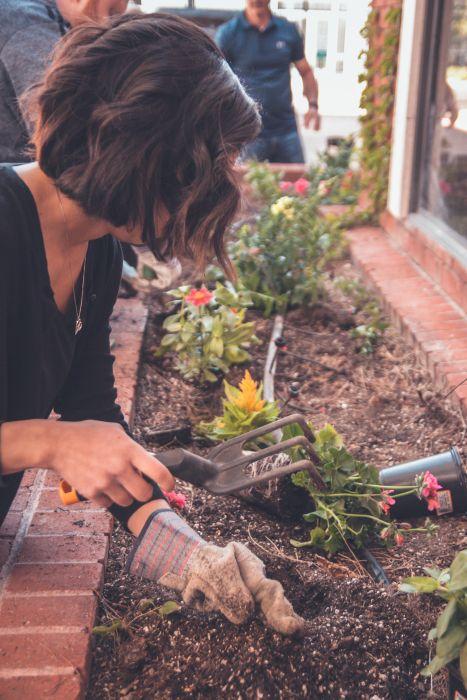 Guerrilla gardening: che cos'è?