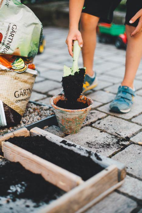 guerrilla gardening: quando la rivoluzione si fa con i fiori
