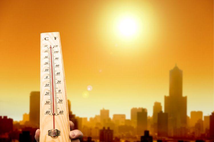 Le azioni di mitigazione contro il cambiamento climatico