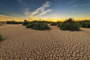 In 50 anni aumentati di 5 volte i disastri legati al clima