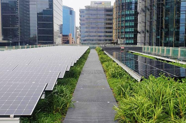 Fotovoltaico e tetti verdi: il caso studio di Sydney