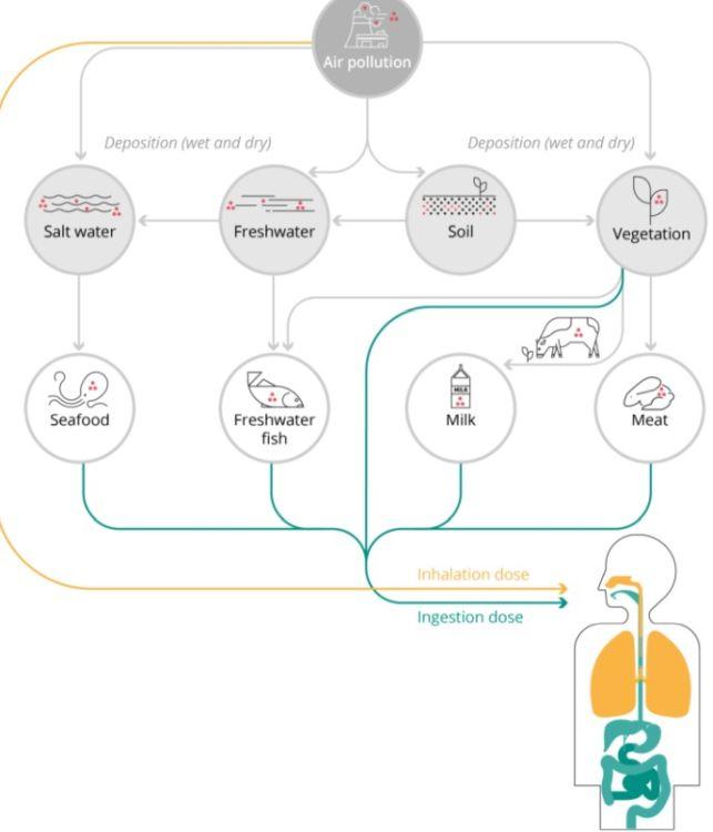 Potenziali impatti sulla salute dell'esposizione agli inquinanti.