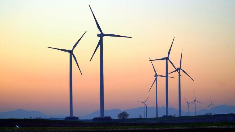 Un manifesto a sostegno dell'energia eolica in vista della COP26